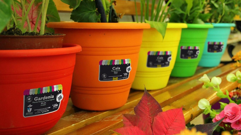 GardenLife | Packaging + Diseño Gráfico GardenLife | Packaging + Diseño  Gráfico ...